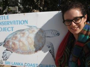 jess turtles